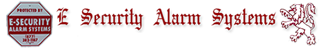E. Security Alarm System